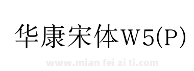 华康宋体W5(P)