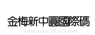 金梅新中圓國際碼